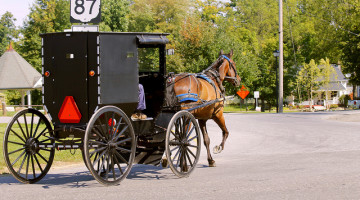 Running in Amish Country and Death by Horse Manure